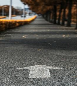 那条名叫知春的路